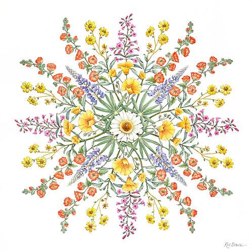 Sonora Super Bloom Print by Kat Brown