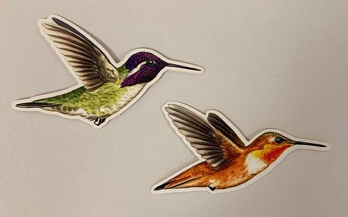 Humming Bird Stickers by Rachel Ivanyi (2-pack)