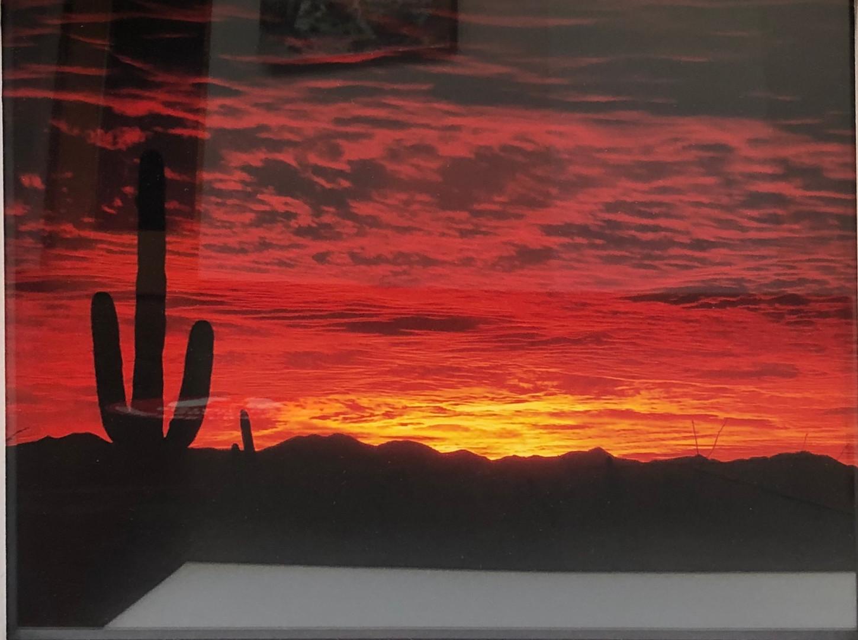 """Sonoran Desert Sunset"" by Richard Maxwell"