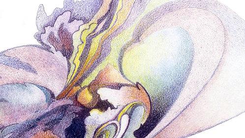 Mini Abstracts in Colored Pencil & Watercolor