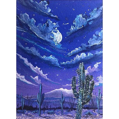 """Desert Nights"" byMegan Johnson"