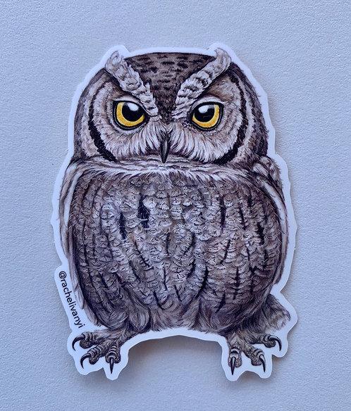 Screech Owl Sticker by Rachel Ivanyi