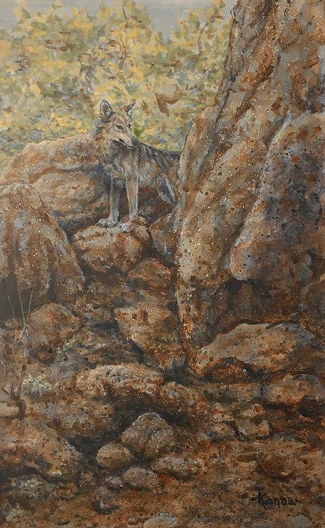 Passage, Mexican Gray Wolf by Kim Duffek