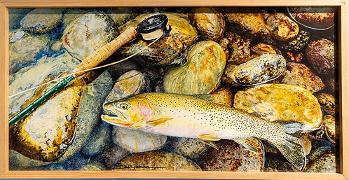 Westslope Cutthroat by Sally Maxwell