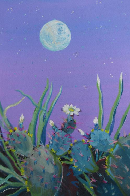 Under a Blue Moon by Megan Johnson