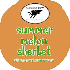SUMMER MELON SHERBET