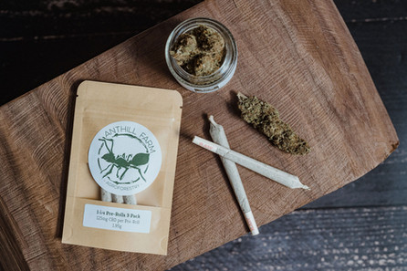 hemp products anthill farm agroforestry