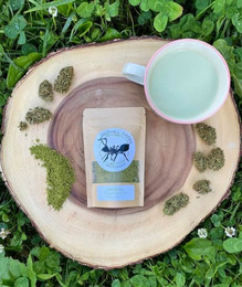hemp tea anthill farm agroforestry
