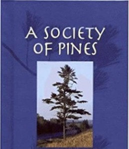 A Society of Pines: An Introduction to the Pines Among Us