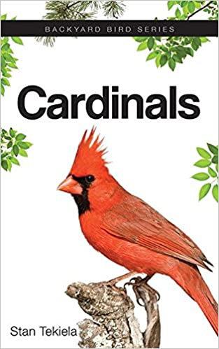 Cardinals: Backyard Bird Series