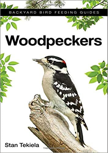 Woodpeckers: Backyard Bird Feeding Guide