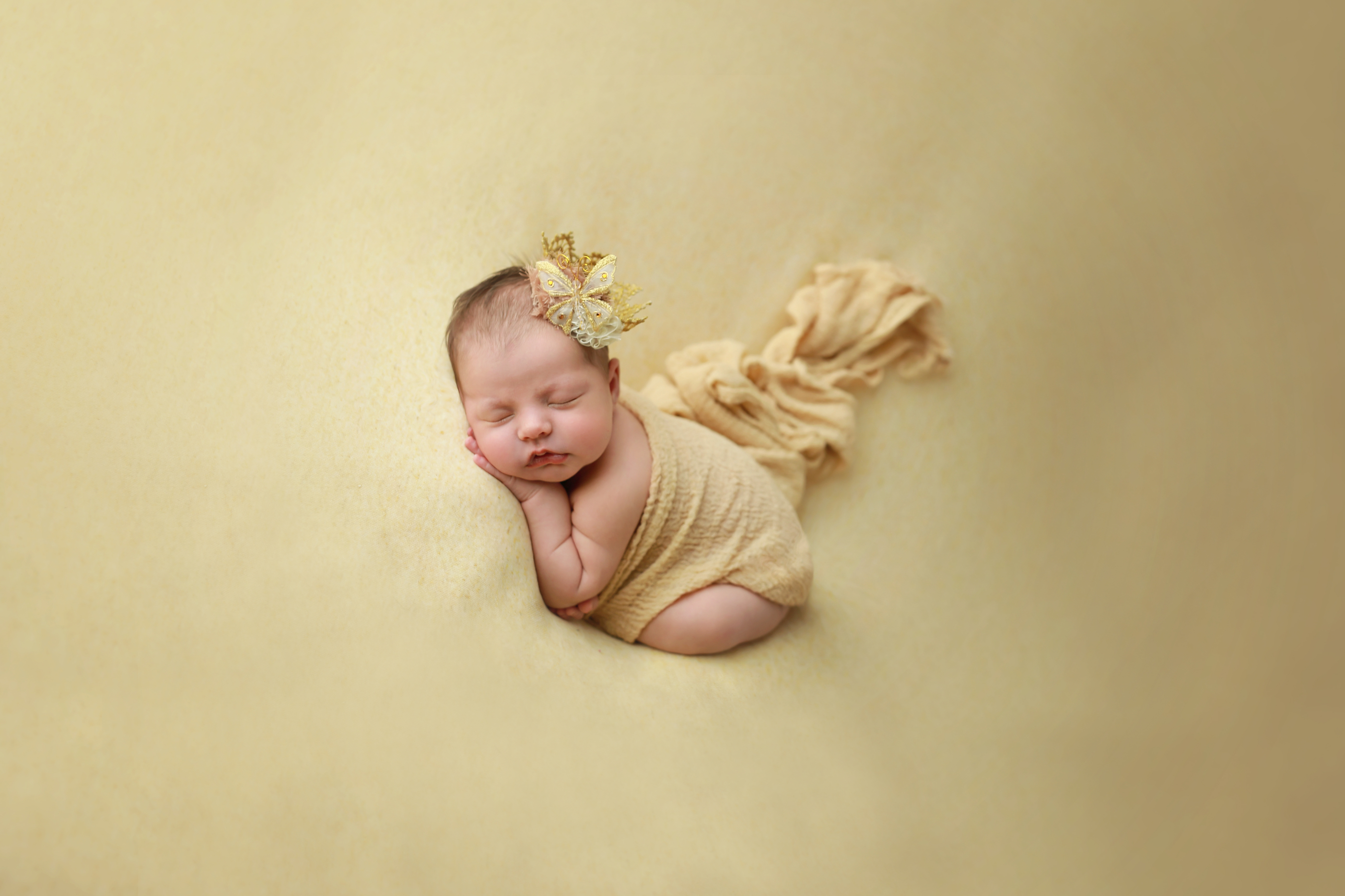 Charlotte Newborn Photography-IBR
