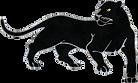 southwestern jaguar.png