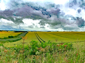 Walk in the Wolds