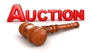 auction-1.jpg