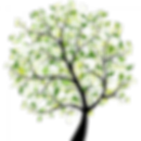 vector_tree-300x300.png