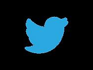 twitter-logo-bird_logo_png.png