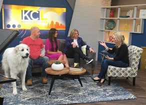 KC Live with Adopt Don't Shop!