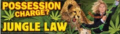 Posssesion Banner.jpg