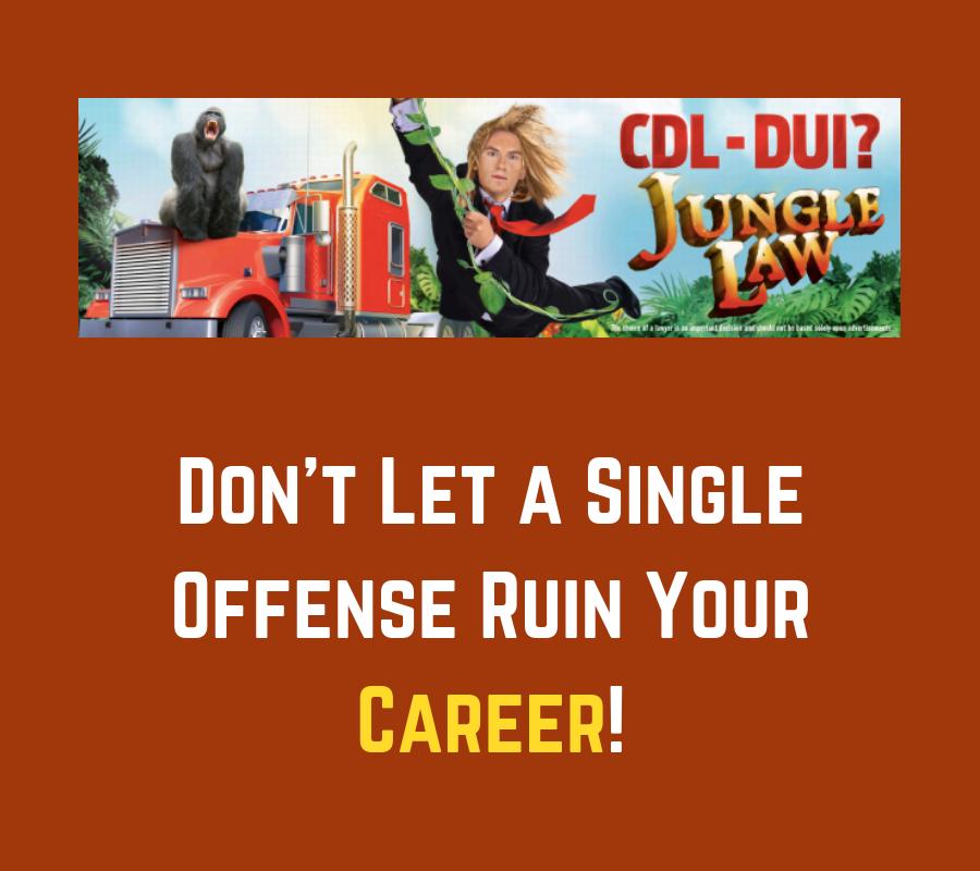 Jungle Law | Traffic Accidents | #MeToo | Animal Lawyers | Kansas City
