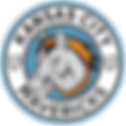 mavs-logo-1.png