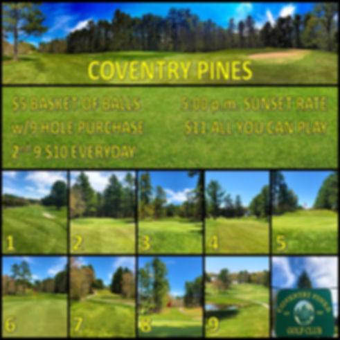 Pines Rough Draft Website.jpg