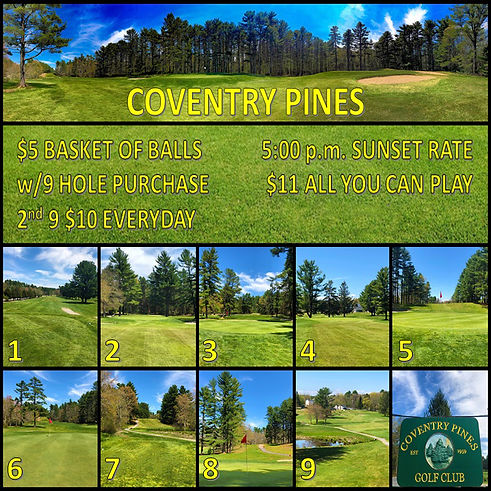 Pines Rough Draft Website.jpg