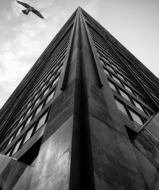 Sharp Perspective - BW - ARTLIT™