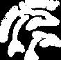 logo_1_160x.webp