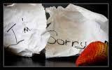 im sorry broken