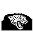jaguars copy.png