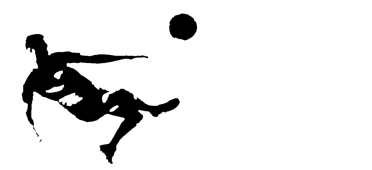 soccer_editedwide.png