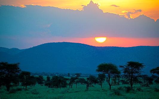 African Sun Gaze - ARTLIT™