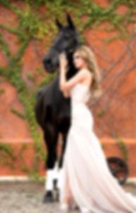 horsevibrant.jpg