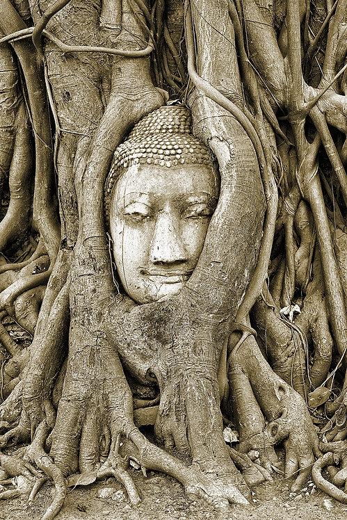 Buddha Birthplace - ARTLIT™