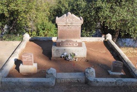 HON. THOMAS CAROLUS BIRNEY