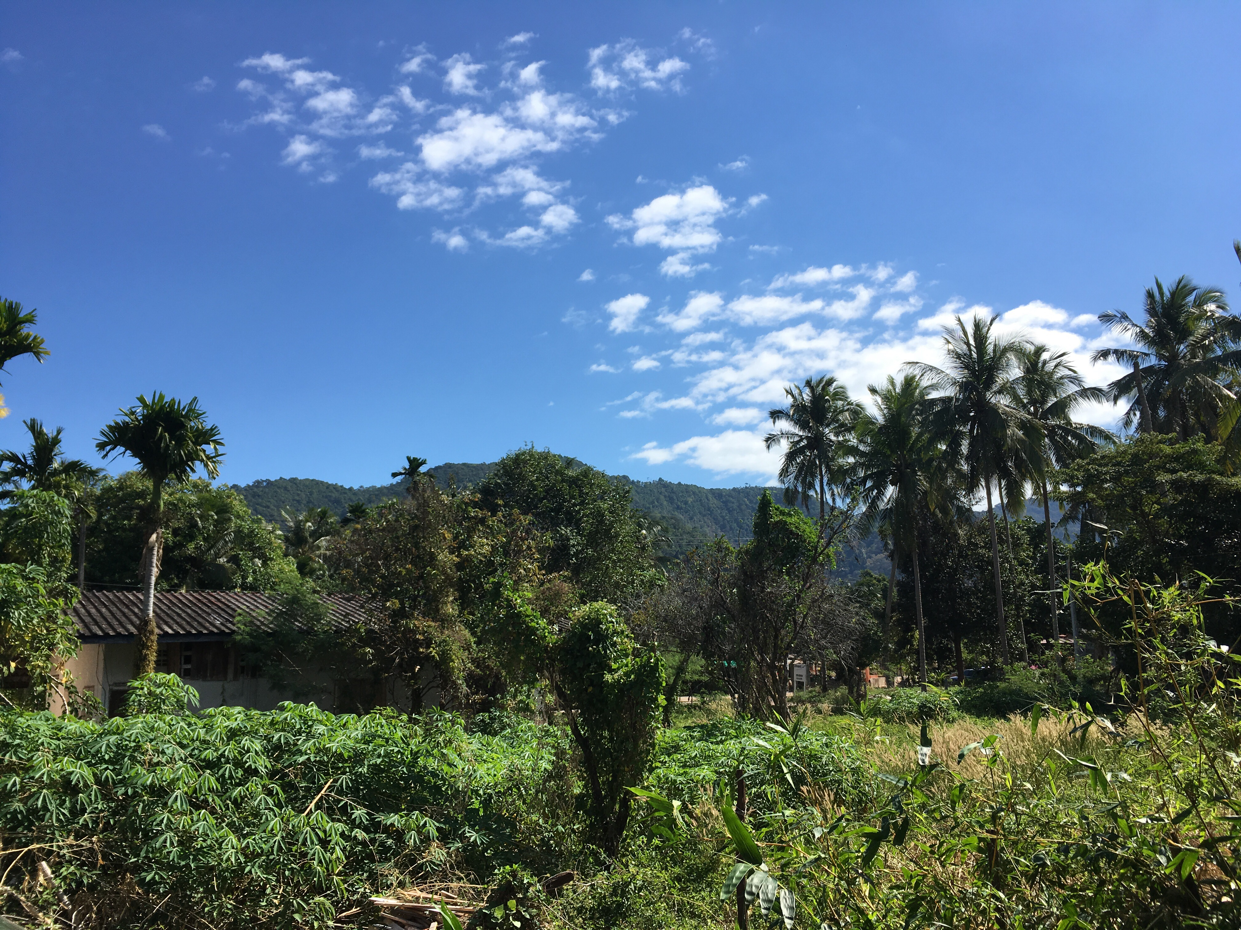 Klong Son Valley. Getting around Koh Chang