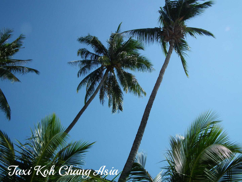 Gree Palms Koh Chang