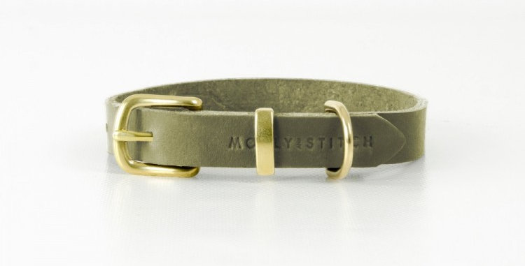 Molly and Stitch Quality Leather Green Dog Collar with Brass Hardware