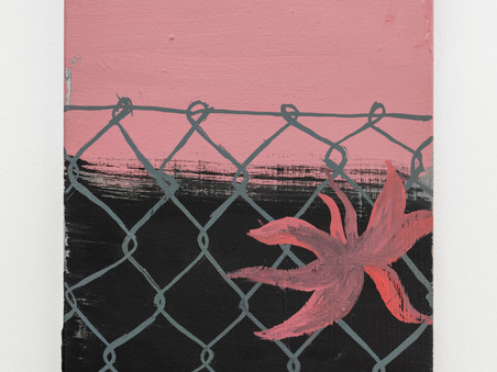 The Fence and The Shadow series, Sally Payen, detail
