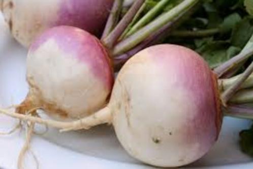 Turnips (roots per lb)