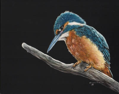 """""""Out On A Limb"""" SOLD  - prints available Contact Me"""