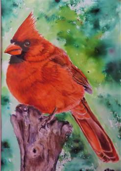The Cardinal $175