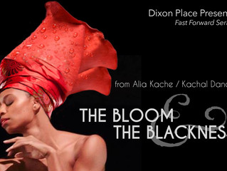 The Process: The Bloom & The Blackness