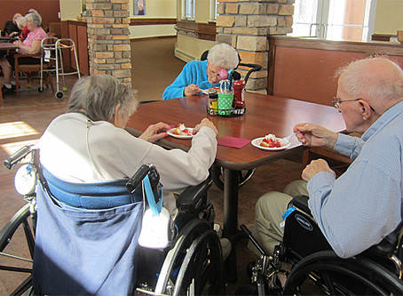 Drawbacks of Long Term Care Homes