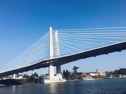 Tilikum Bridge Portland