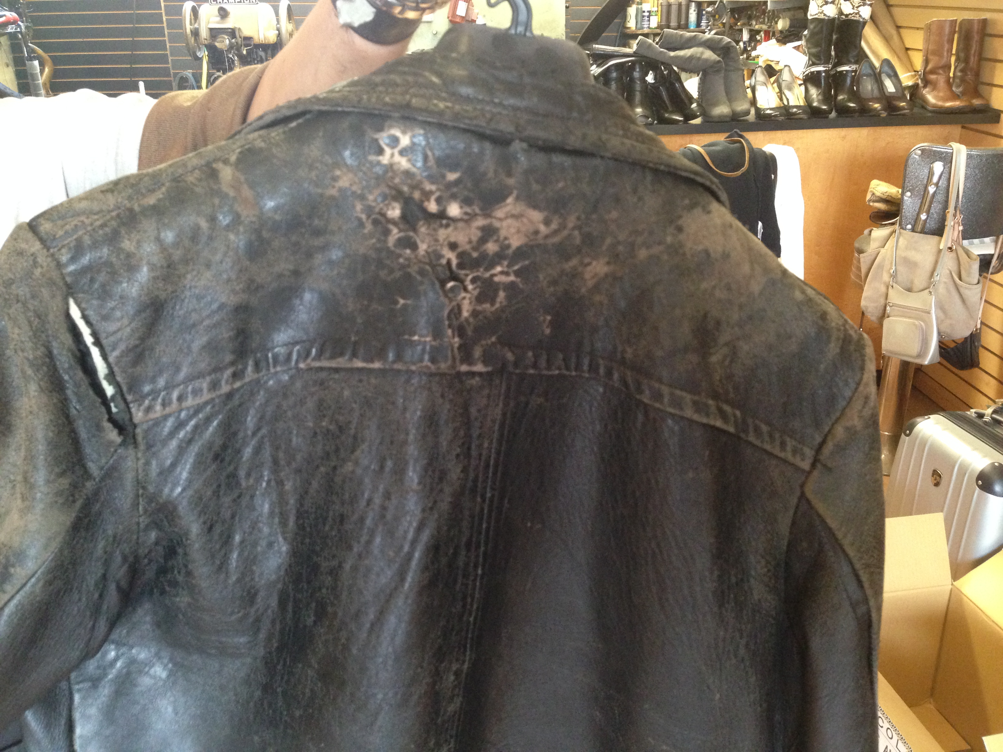 Leather Jacket Before