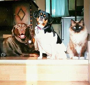 Threesome at the door.jpg