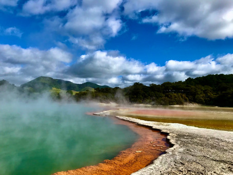 Van'mad Diaries Rotorua
