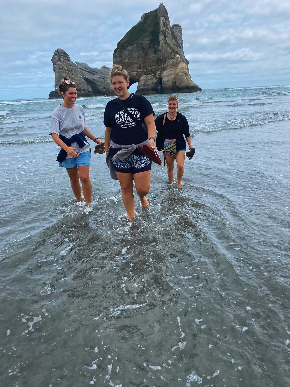 New Zealand Van Life
